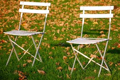 pour toi et moi (Ruth Flickr) Tags: brown sunlight white green leaves dead gold chairs moi vert braun blanche blaetter weiss gruen chaise brun feuilles mortes toi jumiges dsc0341 ruthflickr