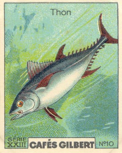 gilbert poissons 11