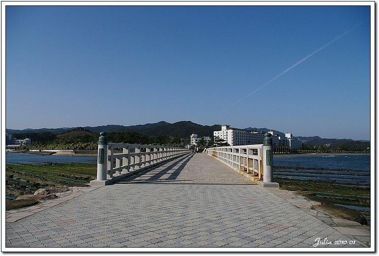 青島海岸 (8)