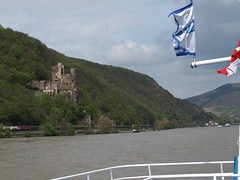 Rhine River Apr 08 075 (MurphMutt) Tags: castle germany rhineriver