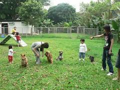 P1130490 (Small) (miyi7423) Tags: 2 photo picnic 99 427