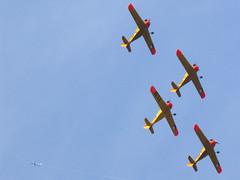 Five Dutch aerobatic flyers (Bn) Tags: airplane flying aircraft aviation aeroplane airshow klm airlines texel liner cubism vliegshow flylikeaneagle royaldutchairlines deltaformation the4elements abigfave highupinthesky platinumphoto diamondclassphotographer flickrdiamond megashot texelairshow dutchaerobaticsteam lijnvliegtuig
