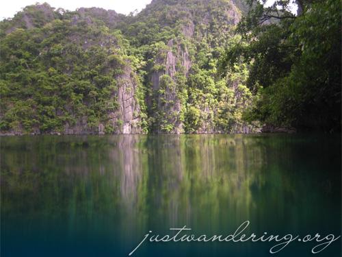 Coron, Palawan - Kayangan Lake Underwater