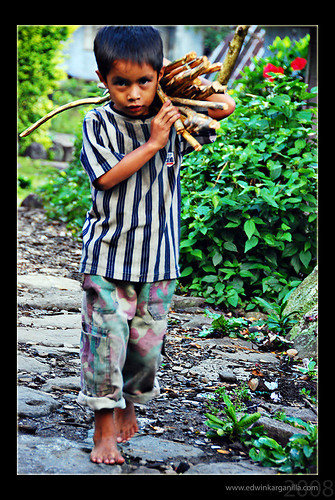 Cambulo, Banaue, Ifugao Province boy carrying firewood shoulder Pinoy Filipino Pilipino Buhay  people pictures photos life Philippinen  菲律宾  菲律賓  필리핀(공화국) Philippines