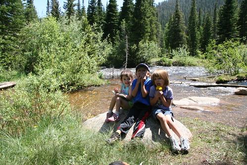 Camp Dick 2008