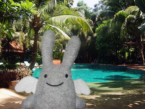 Angel Bunny at the Rabbit Resort