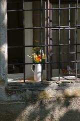 Blumen (captain.orange) Tags: castle austria burg ottenstein österreich pentaxk100d niederösterreich