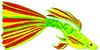 fish (3doel82) Tags: fish bird animals insect gambar koleksi ikan belajar burung binatang carnivora serangga mamalia amphibi
