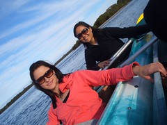 (Queenbean79) Tags: dolphins kayaking portmacquarie