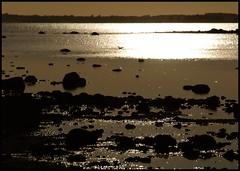 On a hot summernight (Kirsten M Lentoft) Tags: sunset reflection water rocks roskildefjord firstquality seeyoutomorrow momse2600 mmmuuahhhh sleeptightmysweetfriend poseidonsdance artinoneshot kirstenmlentoft