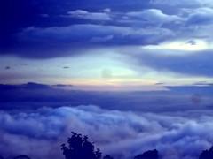El cielo de mis sueos (pardo de noche) Tags: azul del san arboles jose paisaje bosque cielo nubes oaxaca neblina pacifico miahuatlan algodn olissersanchez venadopardo