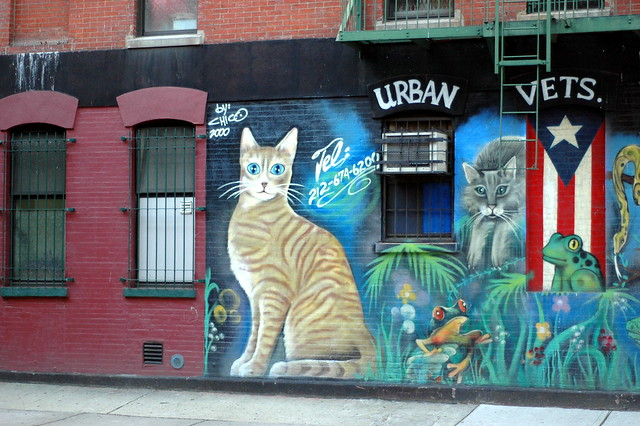 Graffiti in New York - Cats...