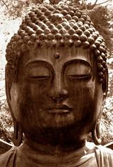 "Buddha (""Cisco Kid"") Tags: sepia sepiatone"