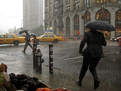 business man from fruit stand vantage, nyc rain 08.08