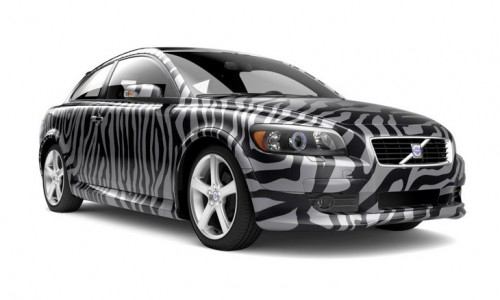zebra volvo