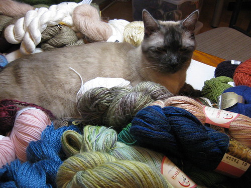 In The Loop Yarn Sale