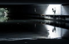 Aquaduct, near Berekuil, Utrecht (lambertwm) Tags: urban reflection netherlands espelho landscape concrete mirror utrecht spiegel sony nederland reflet espejo reflejo 300 alpha miroir aquaduct waterpipe stad reflexin beton landschap specchio viewcount riflesso reflectie a300 waterpijp reflexo riflessione rflexion berekuil afwatering lwmfav