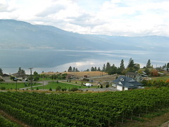 Gray Monk Cellars - view from the patio