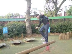 monkey balancing