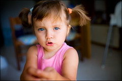 In pigtails (Salvatore Falcone) Tags: portrait people baby canon children kid availablelight blueeyes daughter naturallight francesca handheld 5d pigtails canonef35mmf14lusm salvatorefalcone featuredondiyp