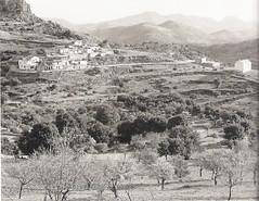 village 1960