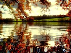 Seasonal reflection...... (Nicolas Valentin) Tags: autumn holiday france reflection lac mywinners colorphotoaward aplusphoto neuvygrandchamp thesuperstarthebest superstarthebest