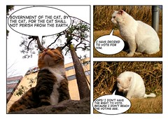 comic 08 (election) (hamapenguin) Tags: white animal cat election comic comiclife neko  effect straycat