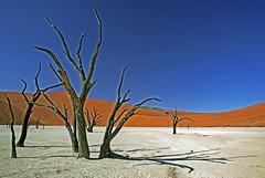 THEATRE (peo pea) Tags: africa dead namibia deserto deadvlei vlei naturalmente thebestofday gnneniyisi peopea artofimages