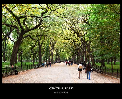 central park wallpaper. Central Park