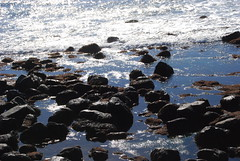 Water and rocks (ComposerLady) Tags: ocean sandiego cabrillomonument pointloma