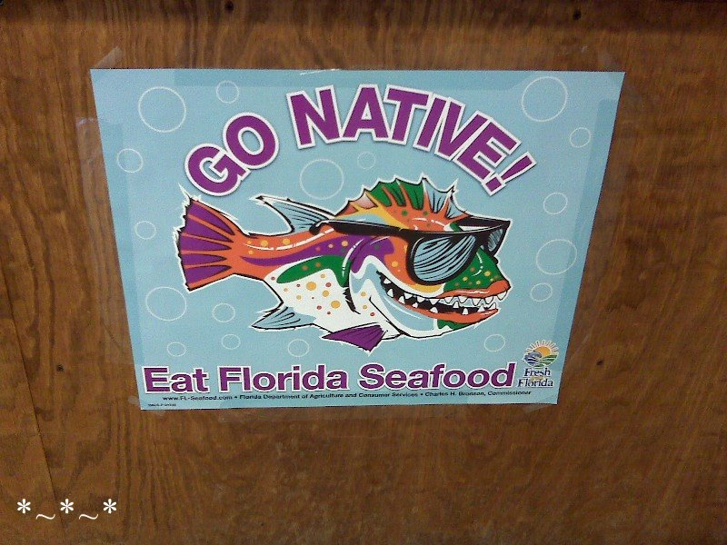 IMG00325-fish-in-sunglasses-sign