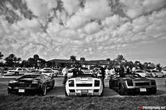 Lamborghini's (F1Photography.net) Tags: black toy mercedes benz nikon chat play martin bs 10 4 rally wheels twin sigma 360 f1 ferrari 63 turbo porsche 200 tots cs series tt 20 nikkor 18 daytona m3 audi 2008 cor luxury mb forged vr maserati aston qp gallardo stradale f430 gtb roadster murcielago r8 clk db9 gt3 hre rsc 355 599 heffner fiorano d90 lp640 l4p gatorun lp560 lp5604