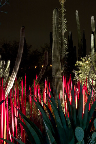 Chihuly_5781