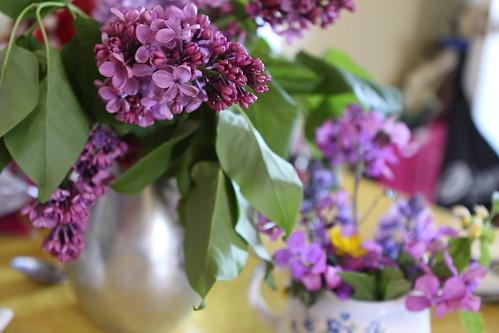Free flowers!