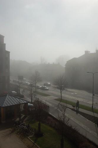 日が差しているのに霧