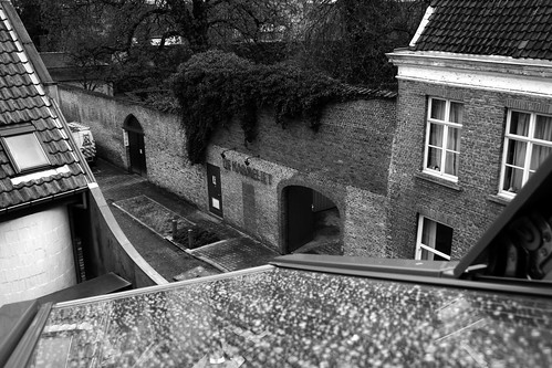 View of De Karmelie crop bw