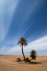 Desert under the moonlight (elosoenpersona) Tags: africa longexposure moon sahara night stars noche bravo long exposure desert palmeras luna full morocco estrellas nocturna moonlight desierto marruecos erg merzouga llena ergchebbi chebbi platinumphoto elosoenpersona goldstaraward platinumsuperstar