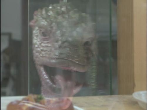 Iguana no Musume
