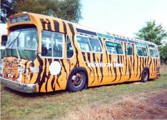 "RTA # 890 ""The Tiger Bus. The Midwest Transit Bus Museum. crest Hill Illinois. september 2000."