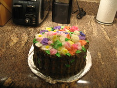 IMG_2661 (madrobins) Tags: cakeclass frostingflowers