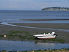 200808 Birch Bay Low Tide