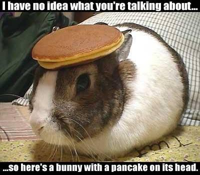rabbit_pancake