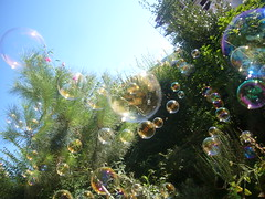 giochi da bimbi (betty Ji) Tags: blu cielo giochi giardino bolle mille volare giocare tantetantissimebolledisapone