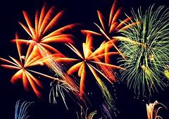 Multiple Orange Palms (EpicFireworks) Tags: shells fireworks flash guyfawkes powder pyro epic pyrotechnics epicfireworks