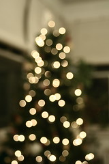 Tree, blurred