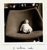Berthy's Fotoalbum (lambertwm) Tags: bw baby film vintage photo blackwhite chair grainy sixties 1964 viewcount artifort kuipstoel lwmfav