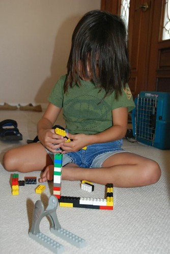 Building with legos