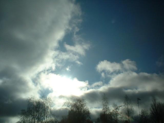 Beautiful shine of sun!