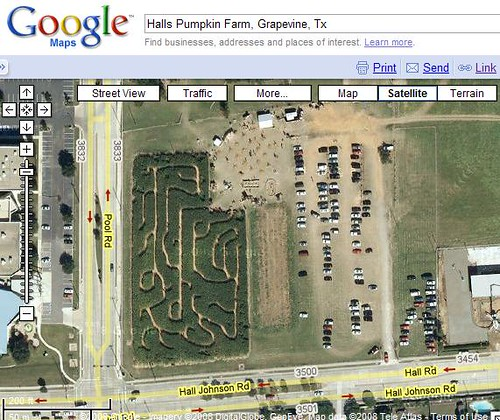 Halls Pumpkin Farm Corn Maze