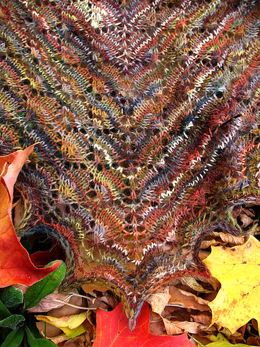 forestcanopyshawl